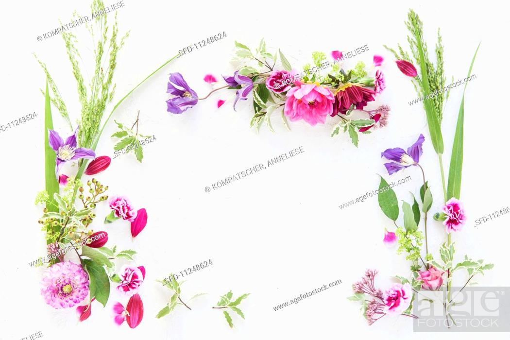 Photo de stock: An arrangement of flowers forming a frame.
