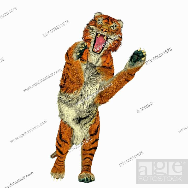 Stock Photo: Tiger attacking.