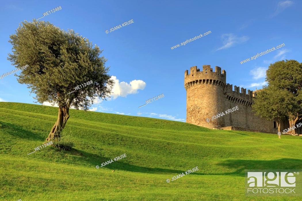 Stock Photo: Castle Garden from the Castello Montebello, Bellinzona.