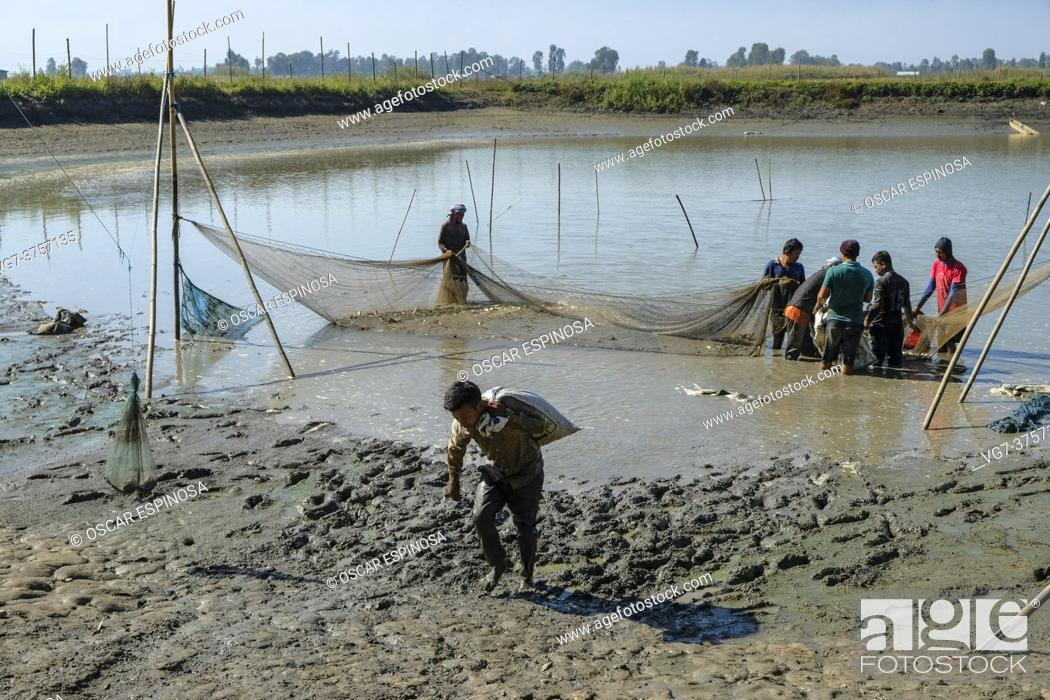 Imagen: Moirang, India - December 2020: A group of men fishing on Lake Loktak in Moirang on December 29, 2020 in Manipur, India.