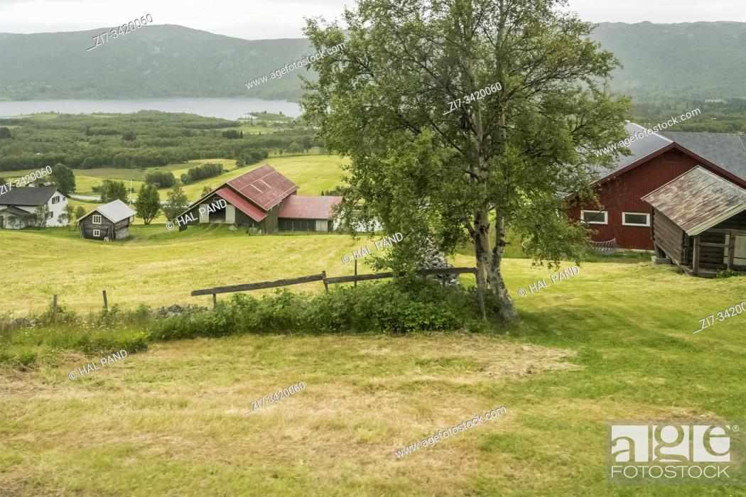 Stock Photo: landscape with farm on glade in green countryside, shot under bright cloudy summer light near Ustaoset, Norway.