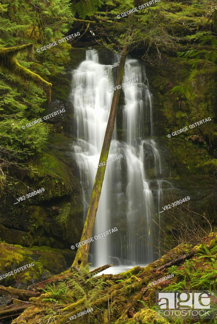 Stock Photo: Lower Parker Falls, Umpqua National Forest, Oregon.