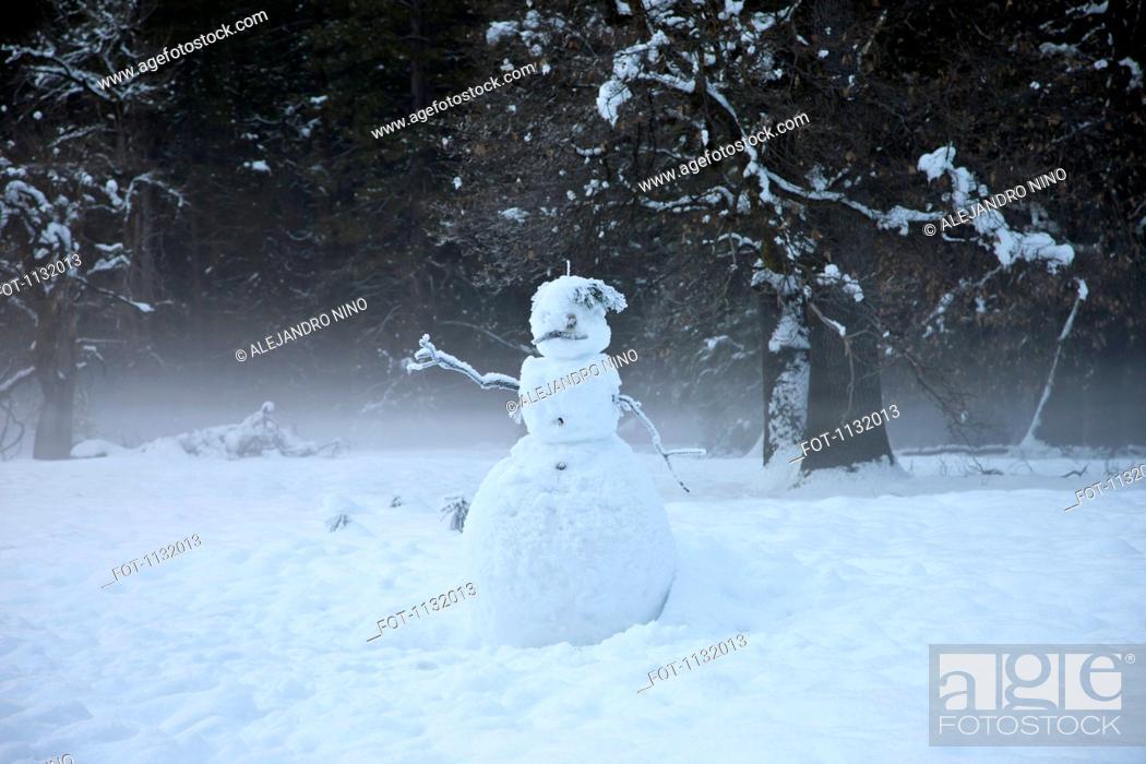 Stock Photo: A snowman in a yard.