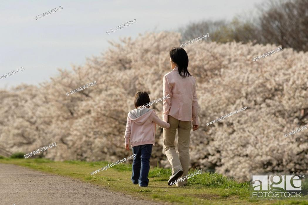 Stock Photo: Rear view of a mother and daughter walking.