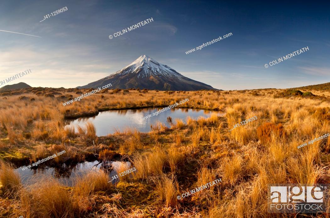 Stock Photo: Mt Egmont / Taranaki, panorama at dawn, reflection in small tarn set among tussock slopes of Pouakai range, Taranaki.