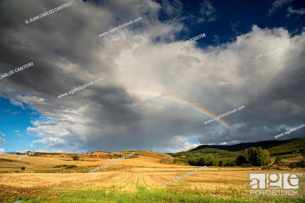 Stock Photo: Fields in La Rioja. Spain. Europe.