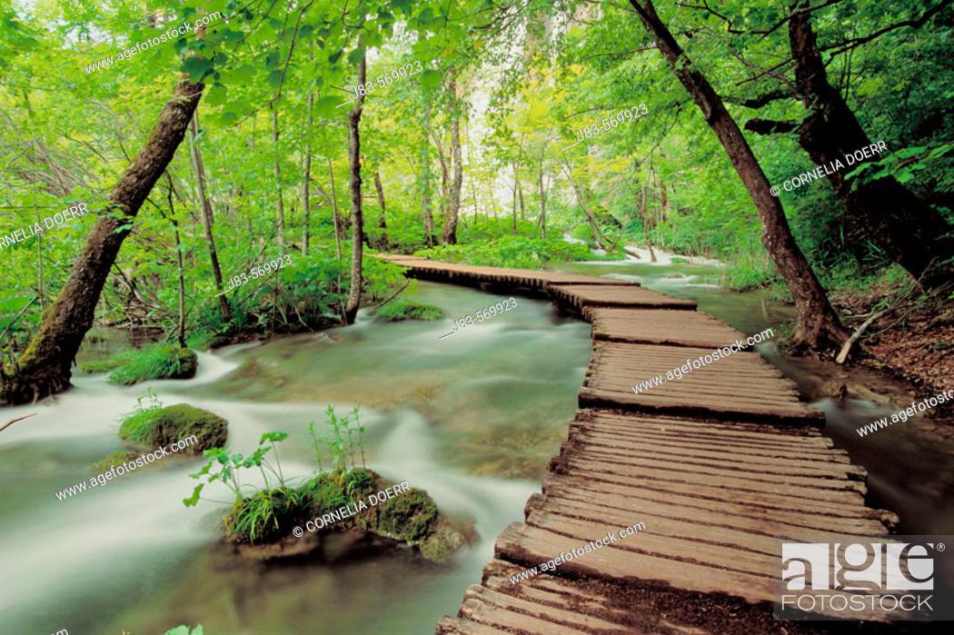 Stock Photo: Waterfall, Plitvice lake. Plitvice National Park, Croatia.