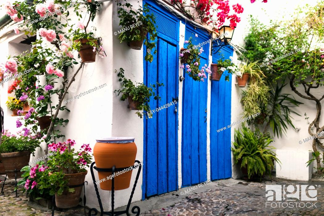 Stock Photo: Typical andalusian courtyard in Cordoba, Andalusia Spain with blue doors and a lot of plants.