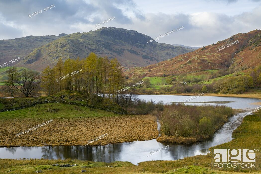 Stock Photo: Autumnal view of the River Brathay and Little Langdale Tarn in the Lake District National Park, Cumbria, England.