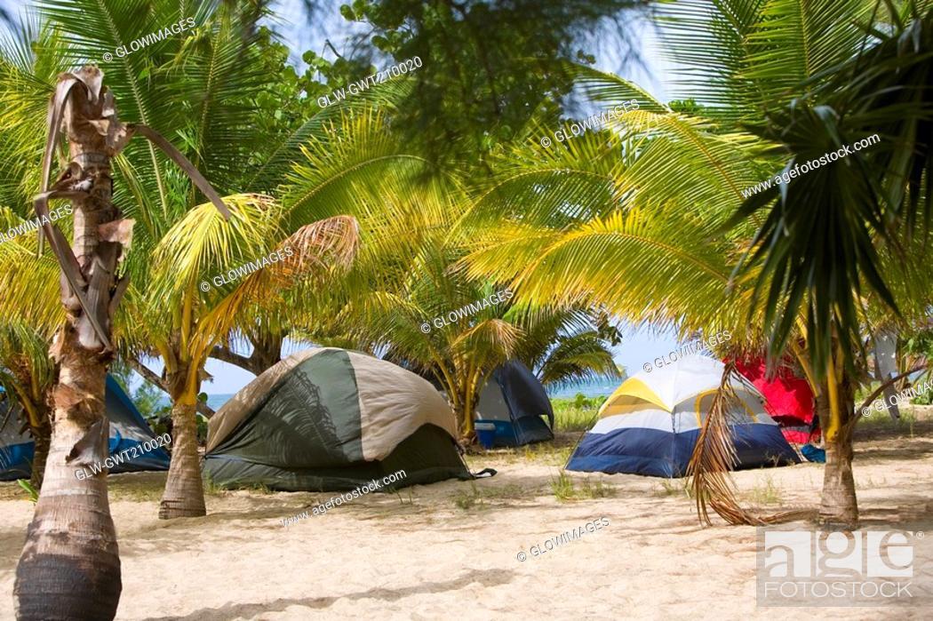 Stock Photo: Palm trees and tents on the beach, Paya Bay Resort, Roatan, Bay Islands, Honduras.