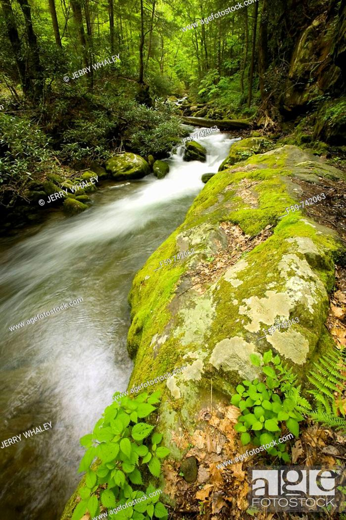 Stock Photo: Roaring Fork, Motor Nature Trail, Great Smoky Mountains National Park, TN, USA.