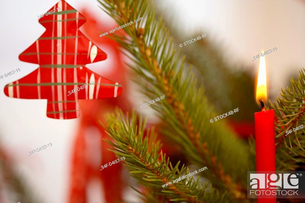 Stock Photo: Burning candle on Christmas tree.