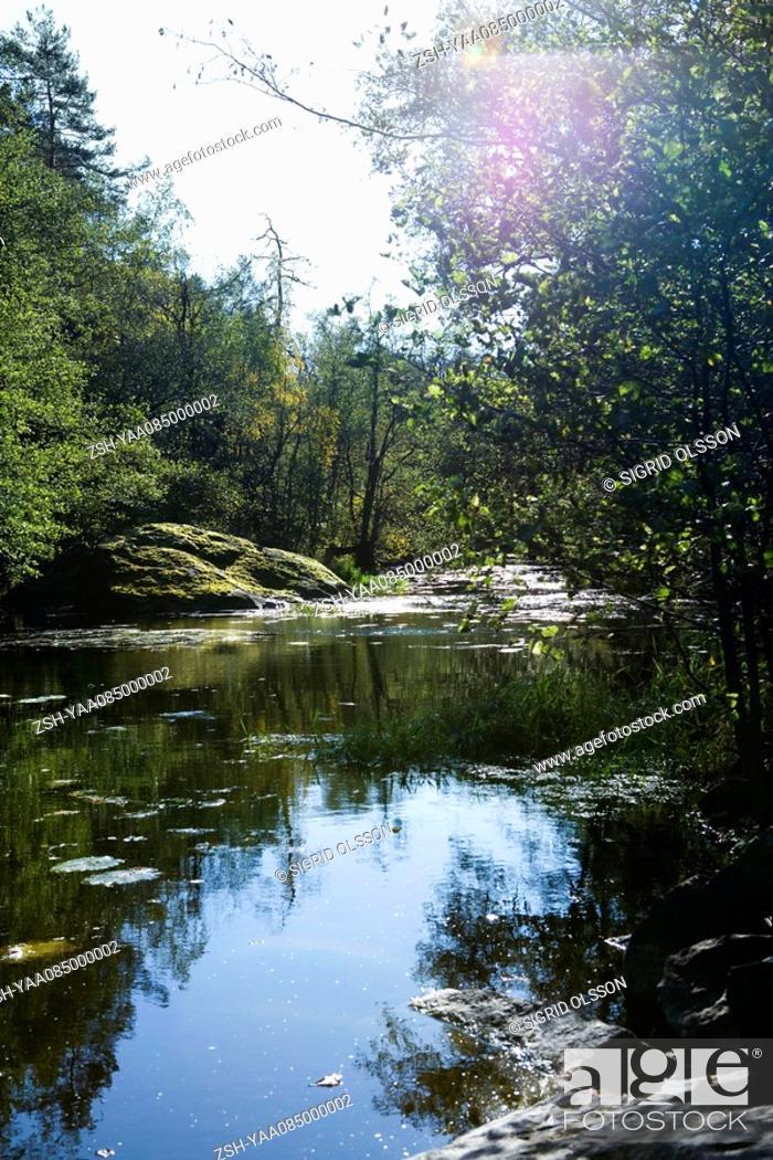 Stock Photo: Tranquil river scene.