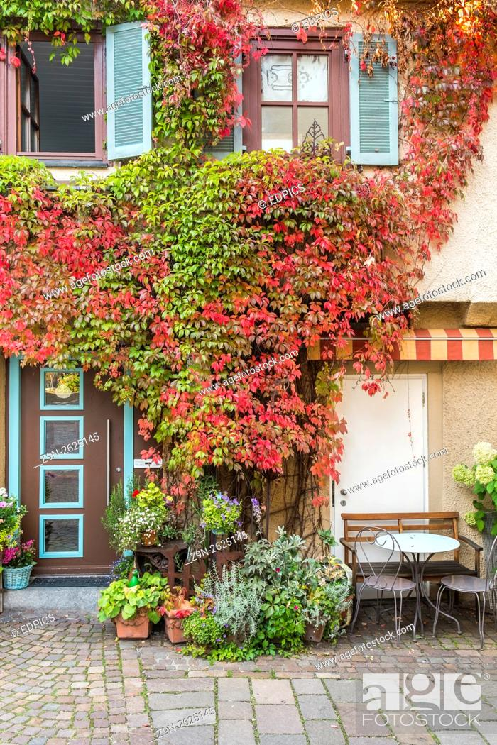 Stock Photo: overgrown facade in the historic part of besigheim, baden-wuerttemberg, germany.