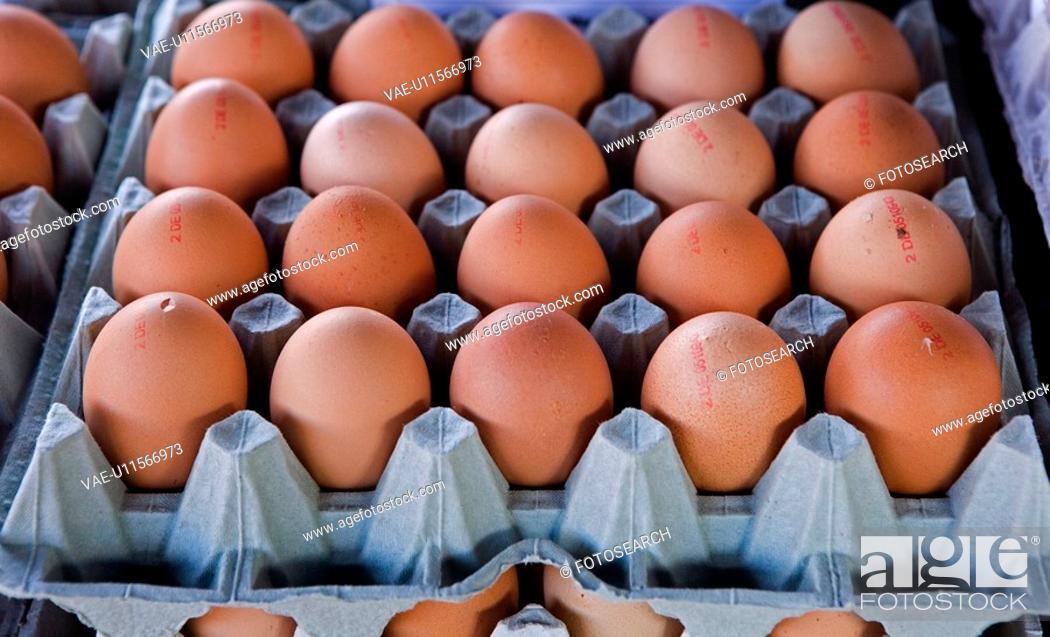 Stock Photo: egg, brown, eat, diemer, cook, eggs, aliment.
