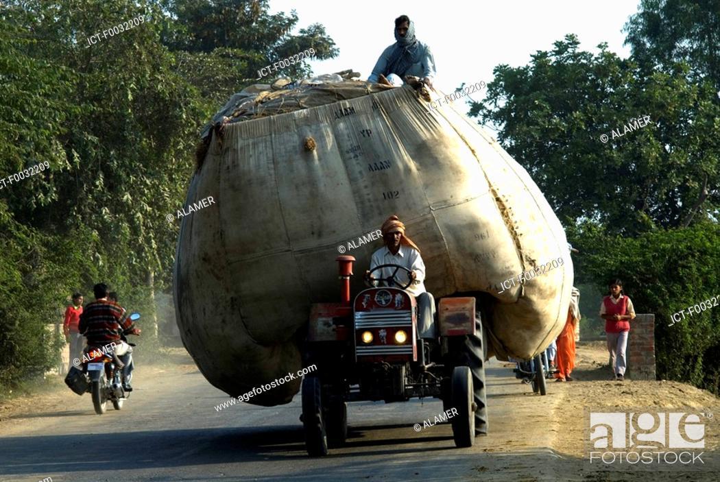Stock Photo: India, Haryana, hay carriage.
