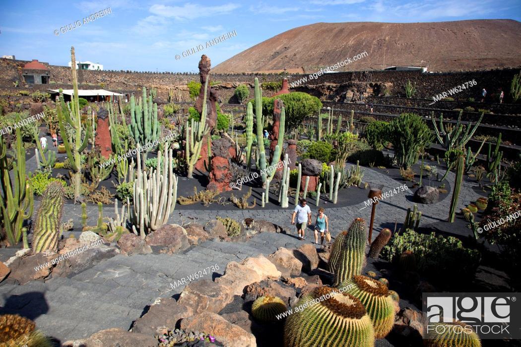 Jardin De Cactus By Artist Cesar Manrique Guatiza Area Lanzarote