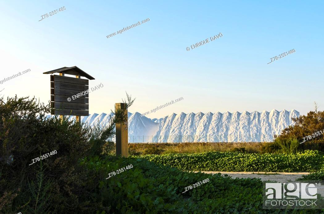 Stock Photo: A salt dune view closed to Playa Lisa beach, Alicante province, Spain.