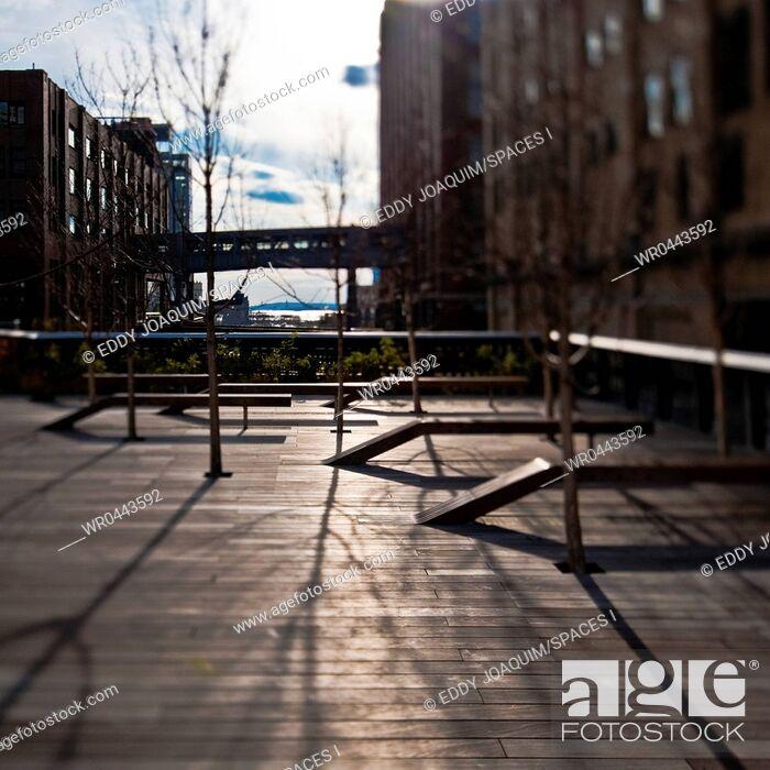 Imagen: High Line Park.