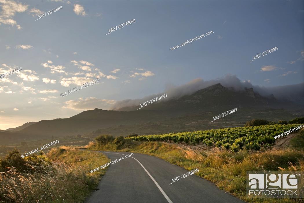 Imagen: Road to Sierra Cantabria, La Rioja, Rioja wine region, Spain, Europe.