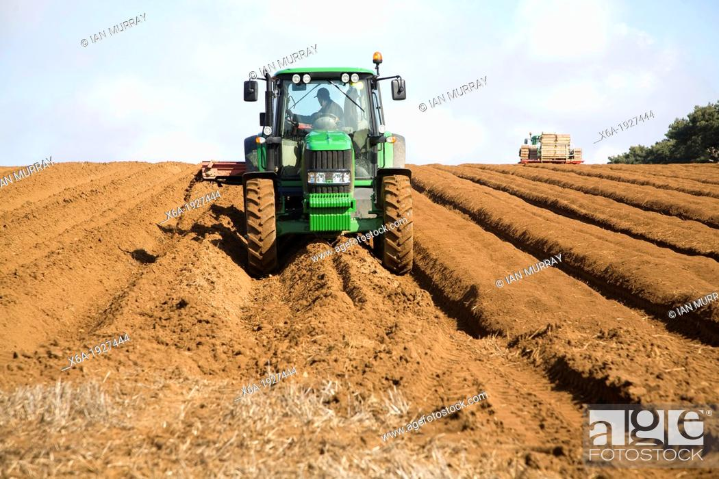Stock Photo: Farm machinery preparing and planting a crop of potatoes in a field, Shottisham, Suffolk, England.