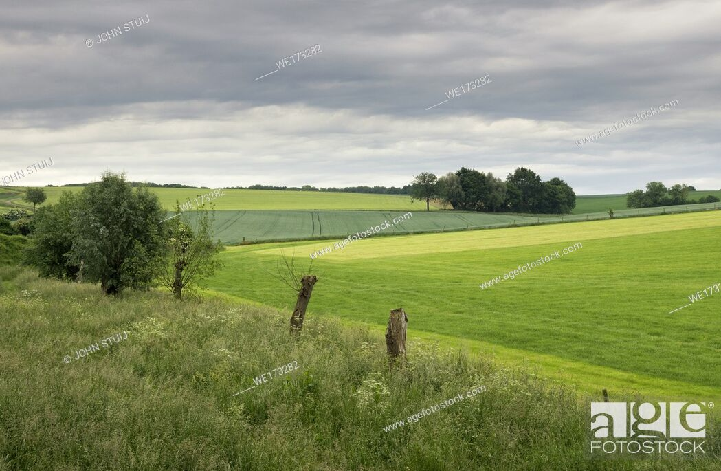 Stock Photo: Landscape near Wijlre in the Dutch most hilly province Limburg.