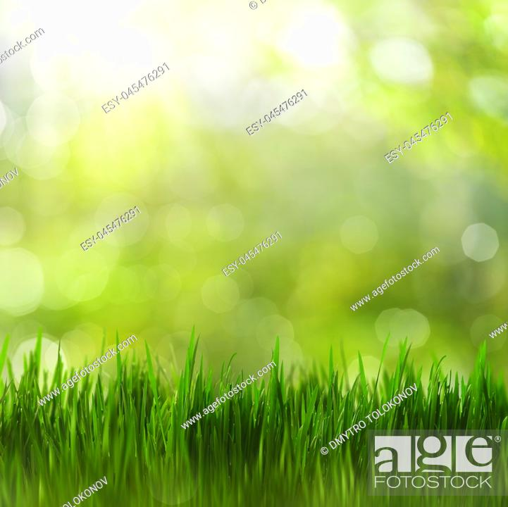 Stock Photo: Summertime. Bright seasonal backgrounds with green grass and beauty bokeh.