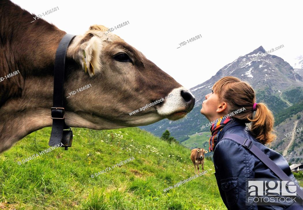 Stock Photo: Close encounters, Saas Fee, canton Valais, Switzerland, Swiss Alps.