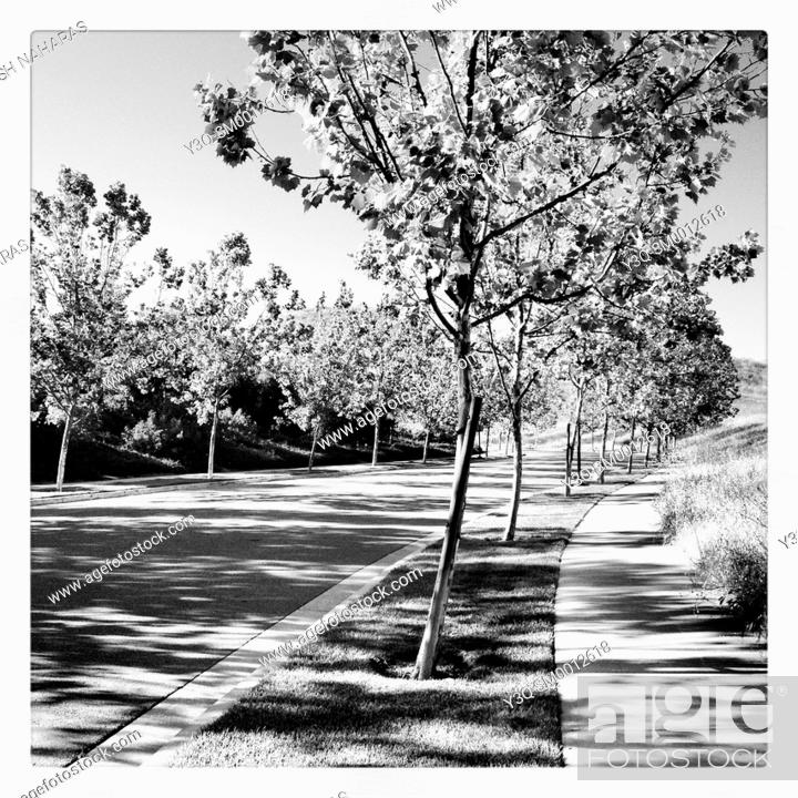 Stock Photo: Shadows come in waves - A curbside afternoon in San Ramon, California, USA.