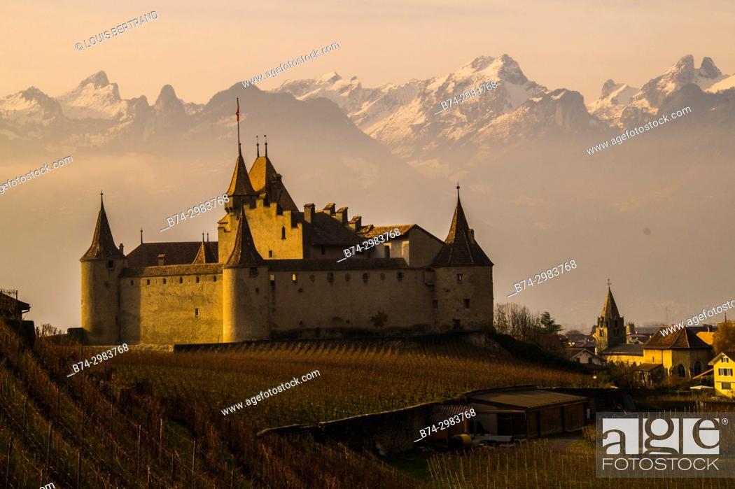 Stock Photo: castle aigle, vaud, swiss.