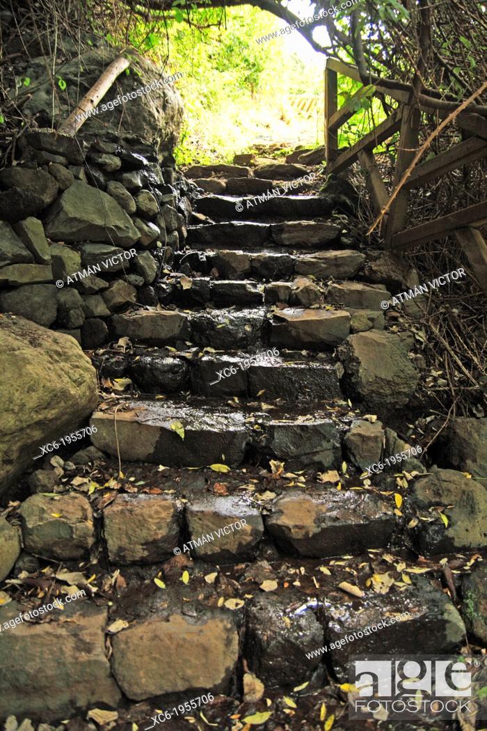 Stock Photo: ancient stone stairway in Ruiz ravine. Tenerife island. Spain.
