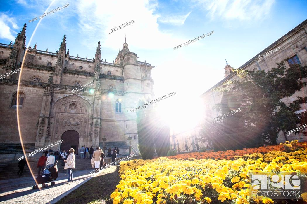Stock Photo: Catedral de Salmanca.