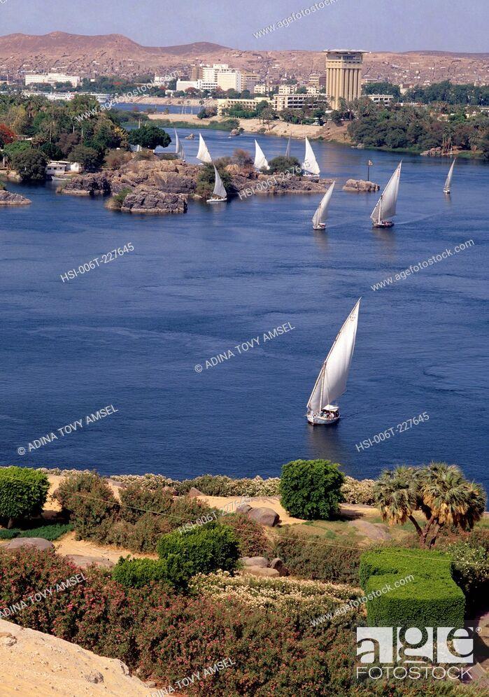Stock Photo: Egypt. Cairo. Nile river. Feluccahs.