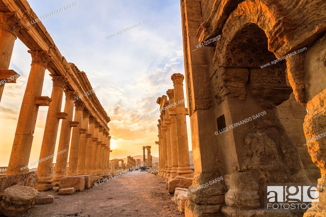 Stock Photo: Great Colonnade at sunset. Palmyra, Syria.