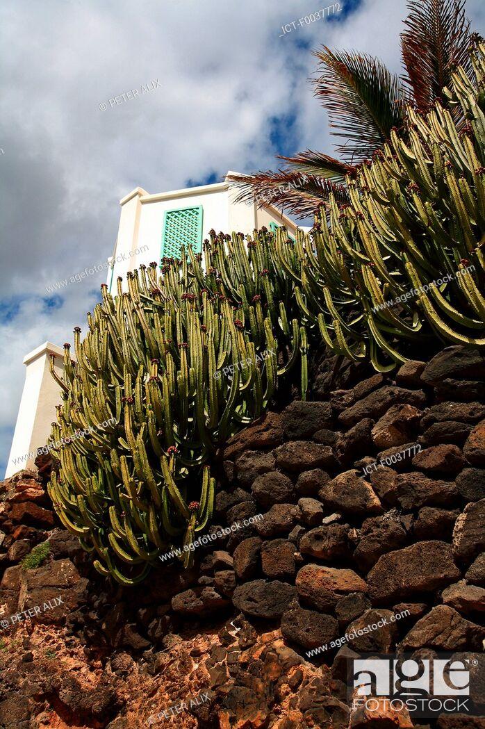 Stock Photo: Spain, Canary islands, Lanzarote, Costa Calma.