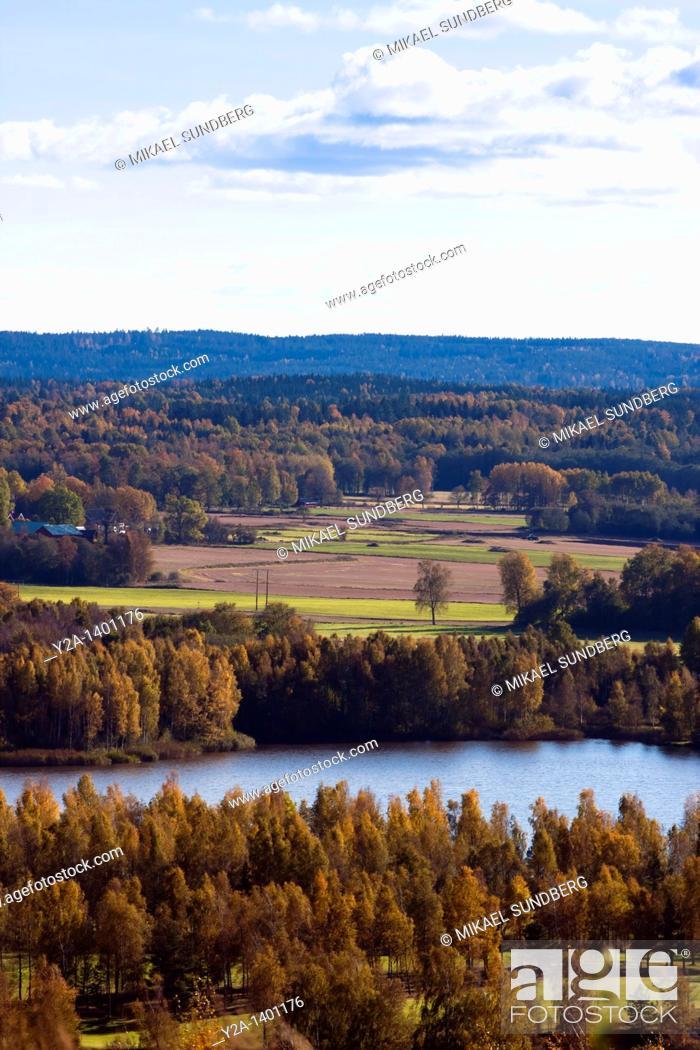 Imagen: Bergslagen in Narke, Sweden.