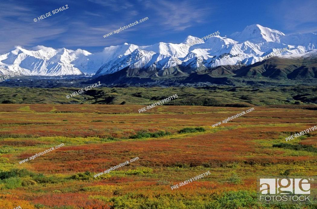 Photo de stock: Alaska Range and Indian summer.