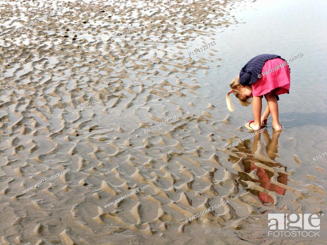 Stock Photo: Niña cogiendo conchas en las playas de De Haan  Bélgica  Mar del Norte.