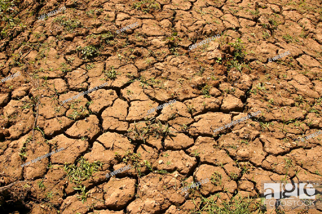 Stock Photo: Cracked soil, agriculture, Brazil.