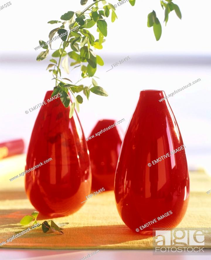 Stock Photo: Green twig in a red glass vase.