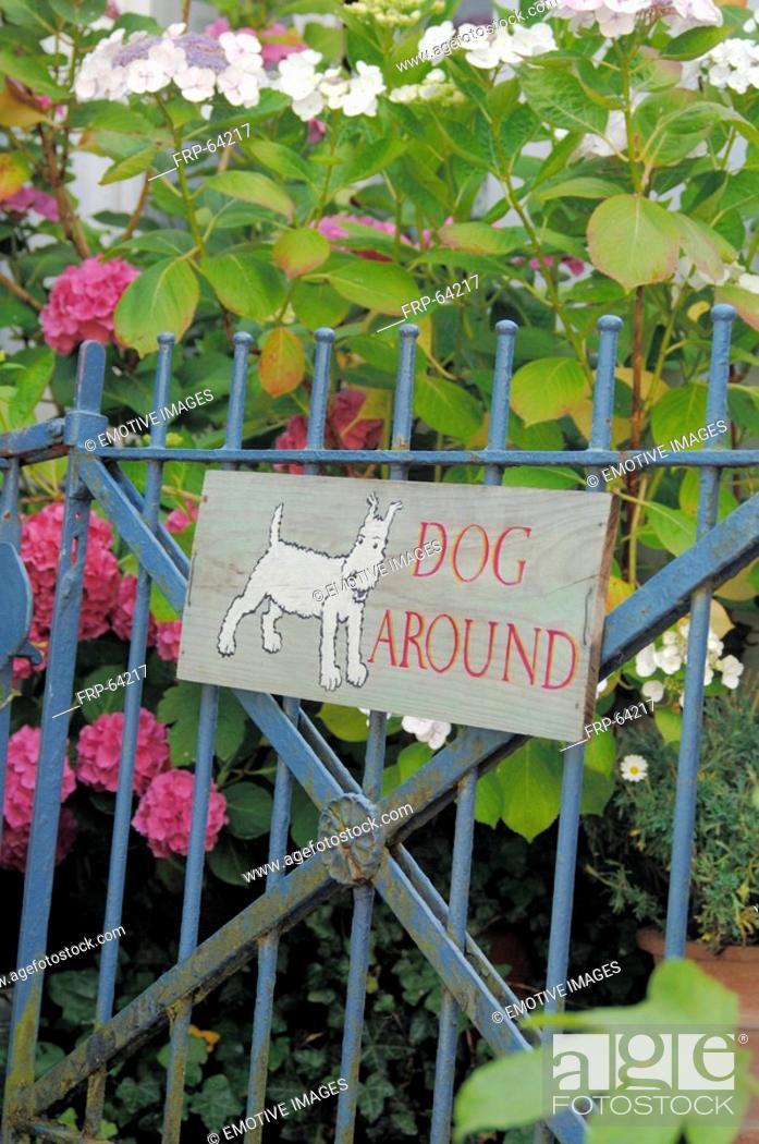 Stock Photo: Beware of Dog.