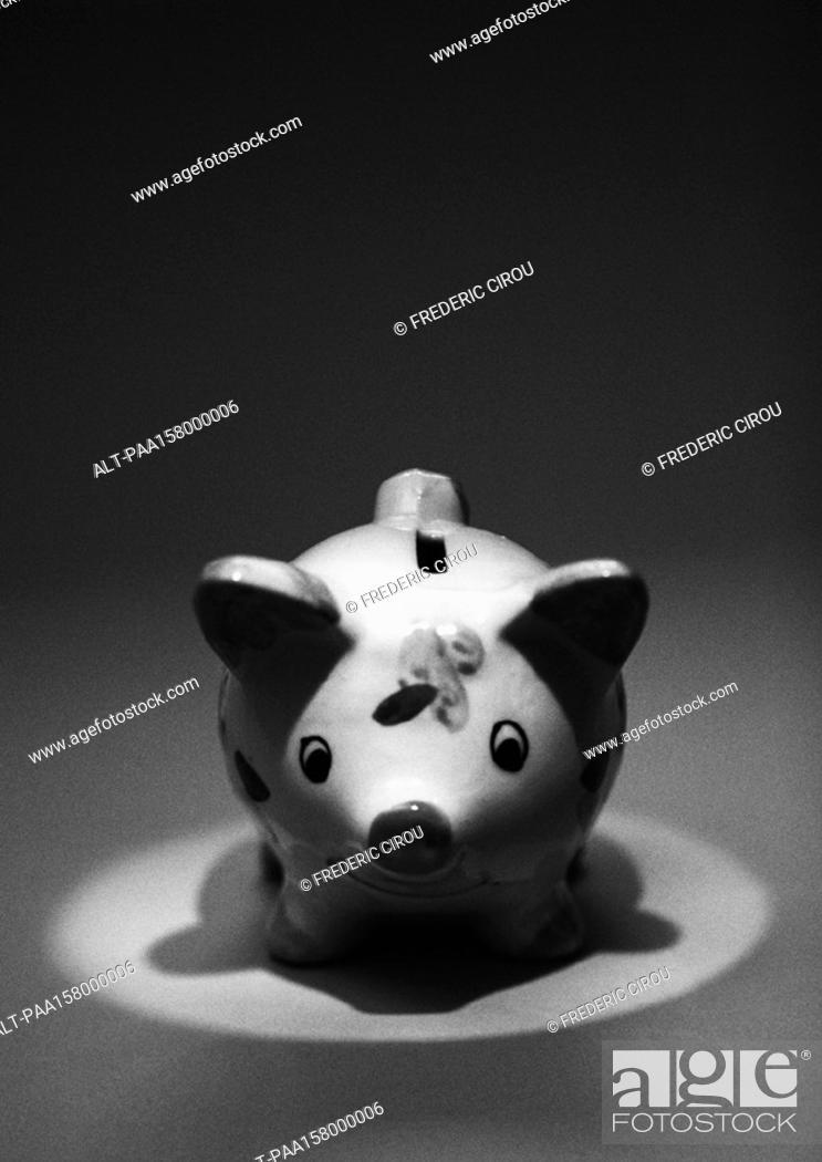 Stock Photo: Piggy bank, b&w.