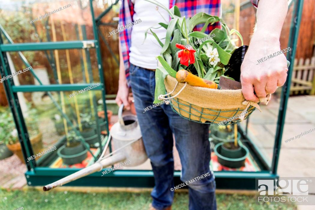 Imagen: Close-up of man holding basket with flowers and watering can before greenhouse in garden.