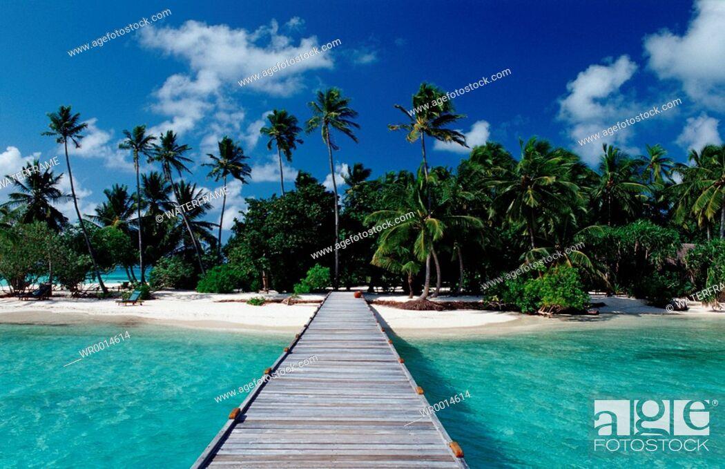 Imagen: Beach at Maledives Island, Indian Ocean, Maldives.