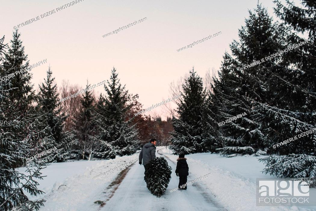 Stock Photo: Father and daughter out getting their own Christmas tree.