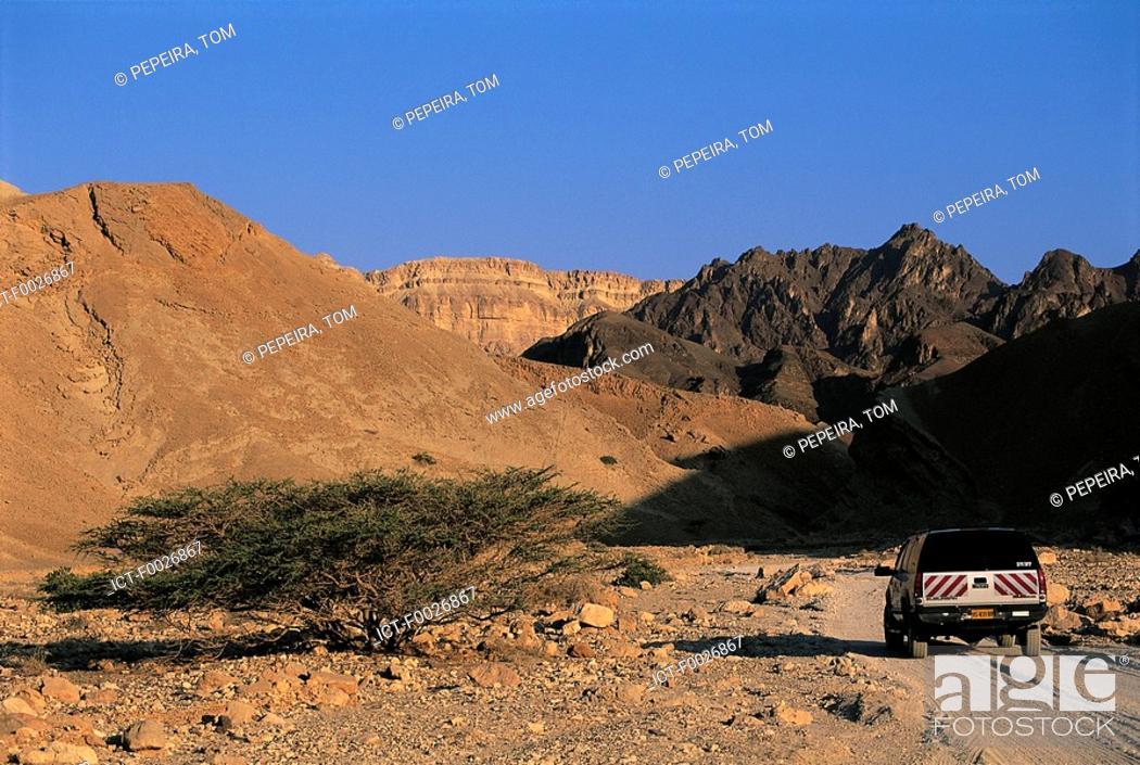 Stock Photo: Israel, Negev desert, 4x4.