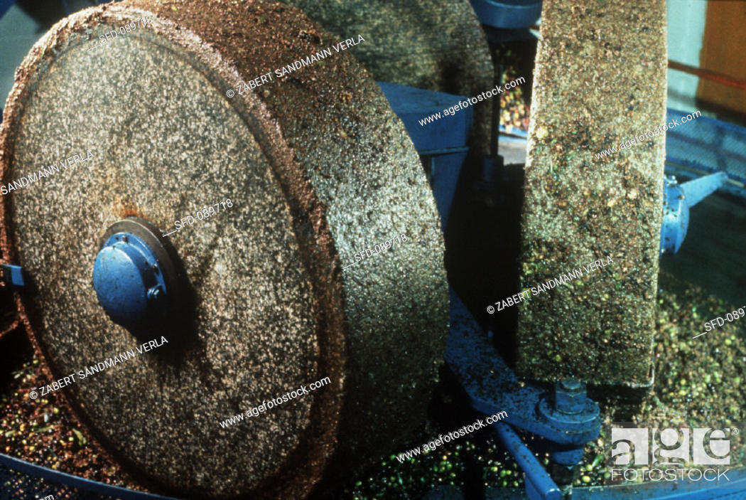 Stock Photo: Olive oil production (3): grinding olives to pulp.