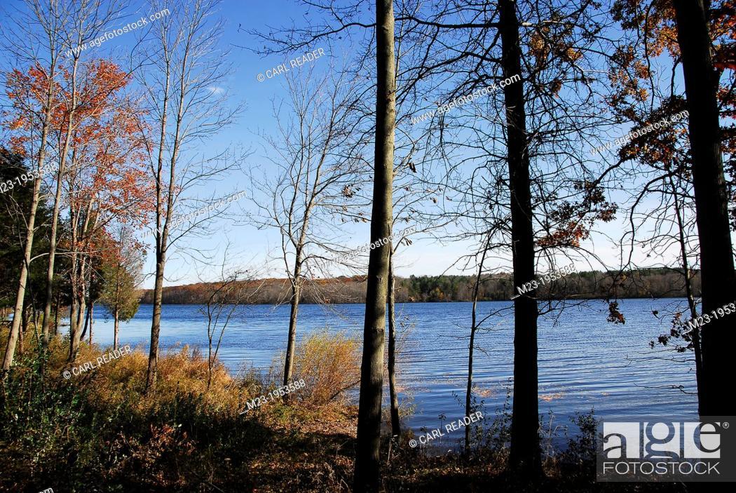 Stock Photo: Remnants of autumn by Lake Nockamixon, Pennsylvania, USA.
