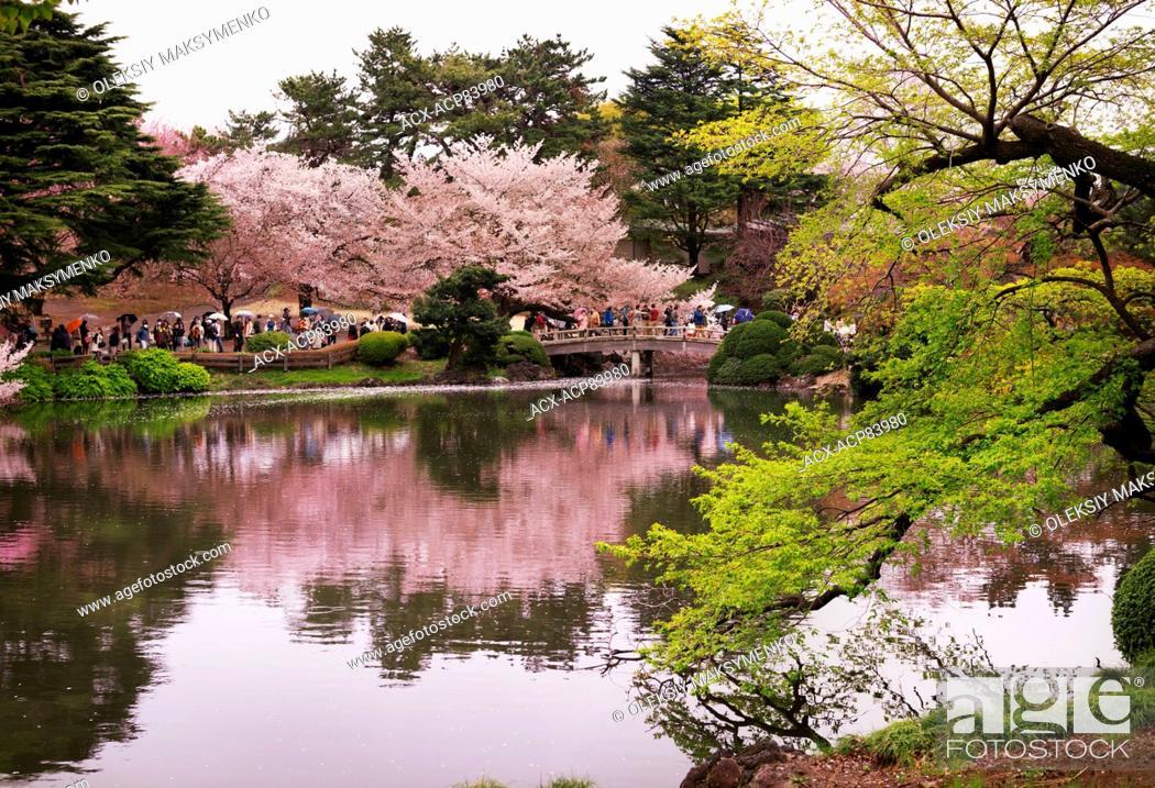 Shinjuku Garden Tokyo Garden Ftempo
