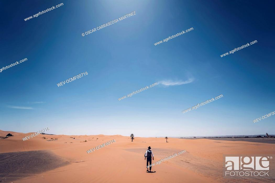 Stock Photo: Lonely man with hat walking in the dunes of the desert of Morocco.